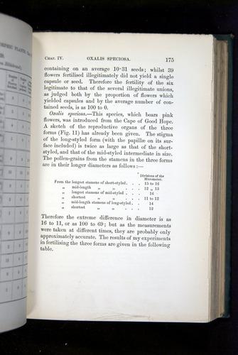 Image of Darwin-F1277-1877-175