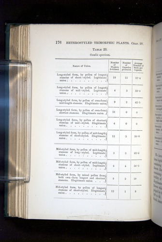 Image of Darwin-F1277-1877-176