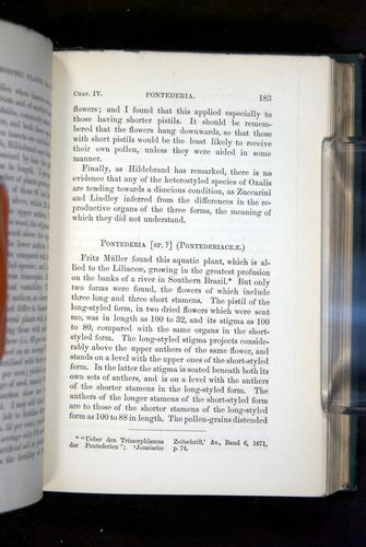 Image of Darwin-F1277-1877-183