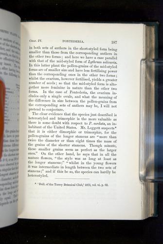 Image of Darwin-F1277-1877-187