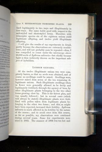 Image of Darwin-F1277-1877-189