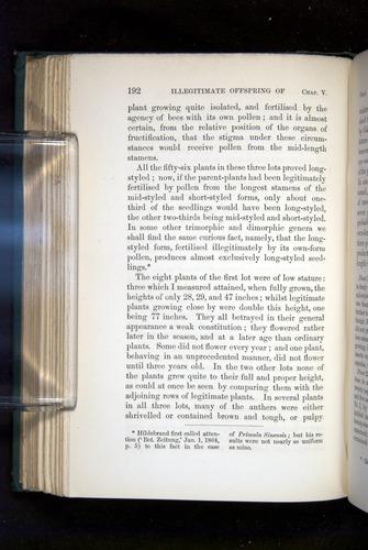 Image of Darwin-F1277-1877-192