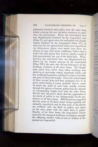 Image of Darwin-F1277-1877-204