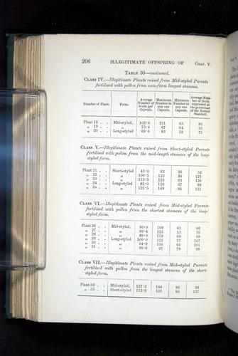 Image of Darwin-F1277-1877-206