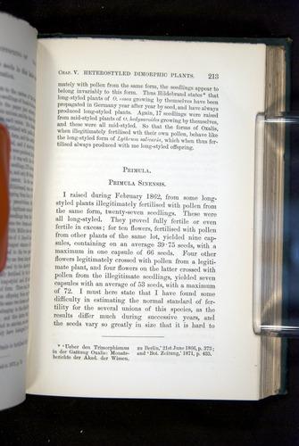 Image of Darwin-F1277-1877-213