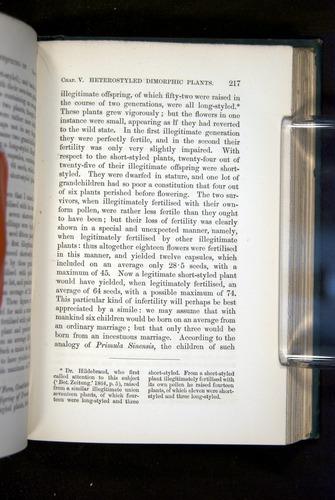 Image of Darwin-F1277-1877-217