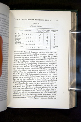 Image of Darwin-F1277-1877-219