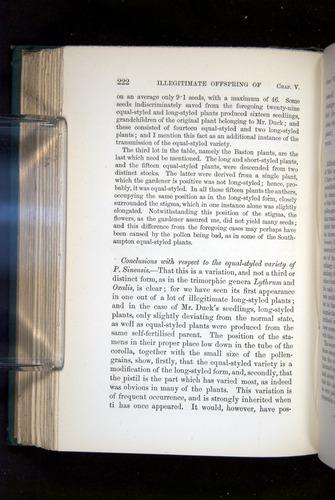 Image of Darwin-F1277-1877-222