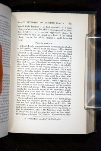 Image of Darwin-F1277-1877-223