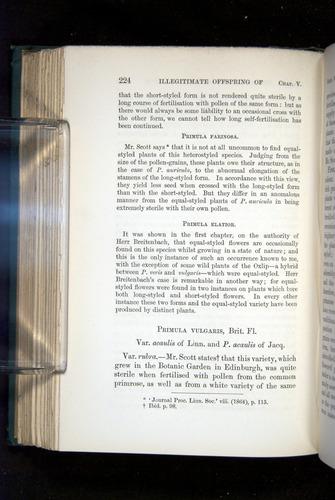 Image of Darwin-F1277-1877-224
