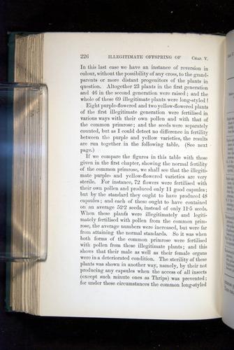 Image of Darwin-F1277-1877-226