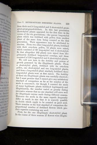 Image of Darwin-F1277-1877-229