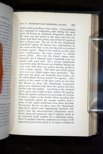 Image of Darwin-F1277-1877-231