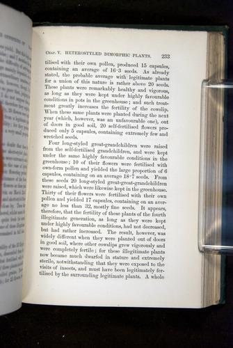 Image of Darwin-F1277-1877-233