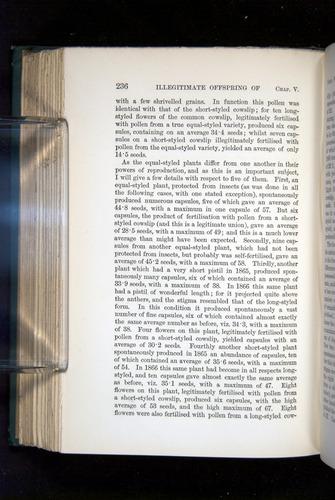 Image of Darwin-F1277-1877-236
