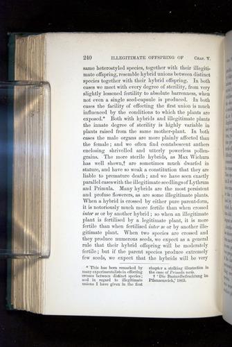 Image of Darwin-F1277-1877-240