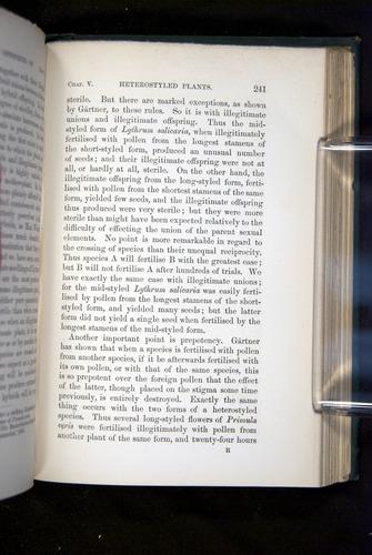 Image of Darwin-F1277-1877-241