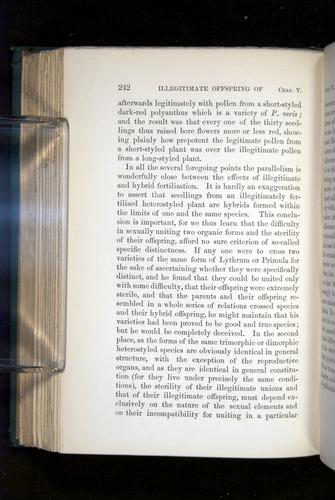 Image of Darwin-F1277-1877-242
