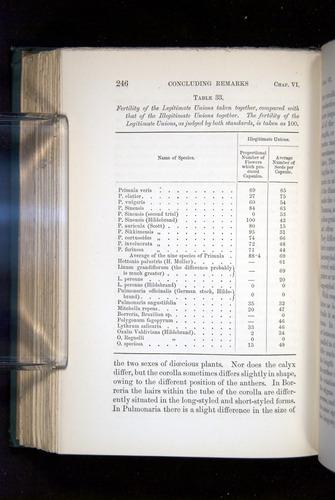 Image of Darwin-F1277-1877-246
