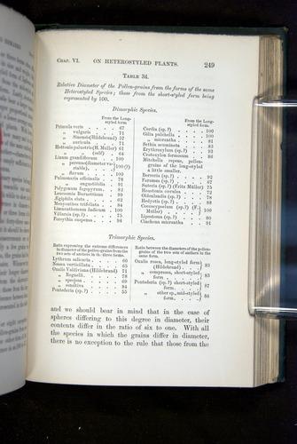 Image of Darwin-F1277-1877-249
