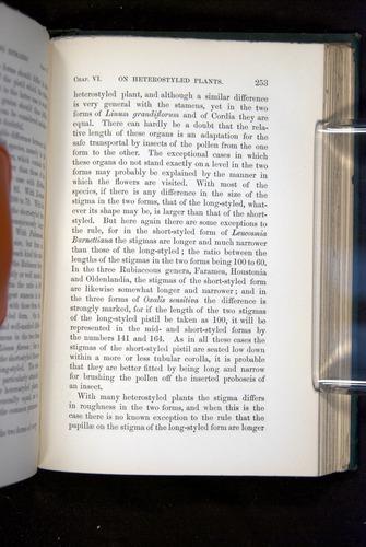 Image of Darwin-F1277-1877-253