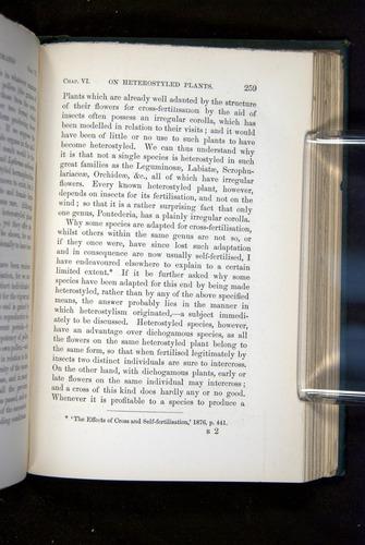 Image of Darwin-F1277-1877-259