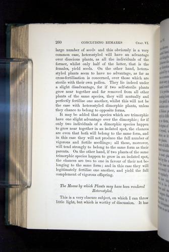 Image of Darwin-F1277-1877-260