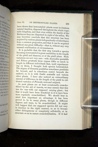 Image of Darwin-F1277-1877-261