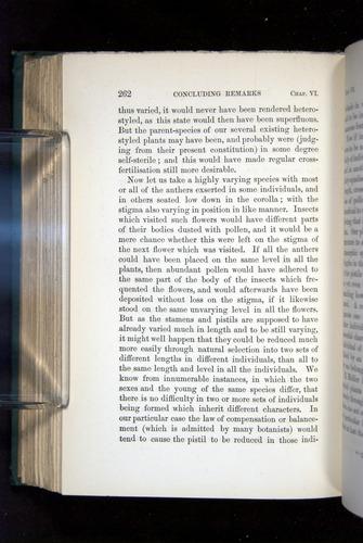 Image of Darwin-F1277-1877-262