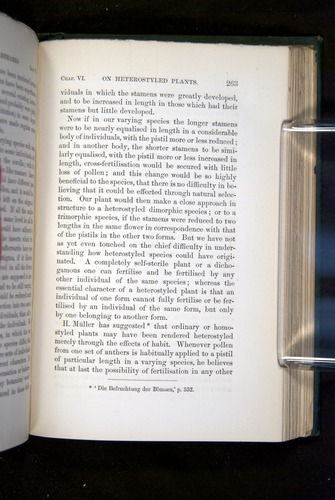 Image of Darwin-F1277-1877-263