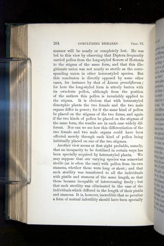 Image of Darwin-F1277-1877-264