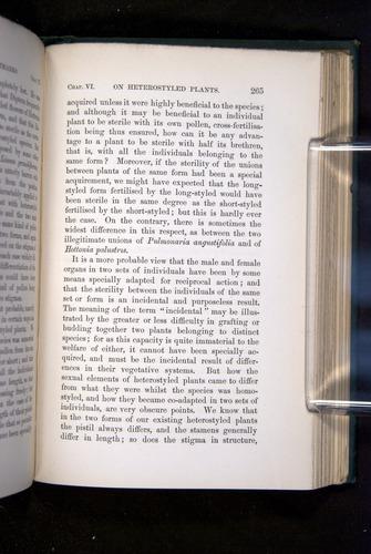Image of Darwin-F1277-1877-265
