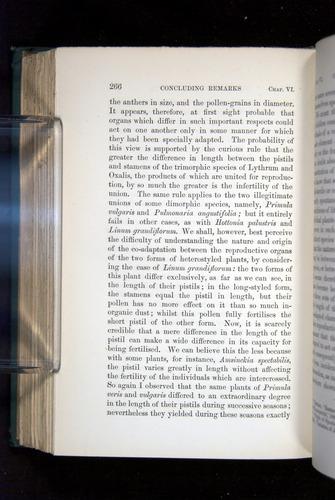 Image of Darwin-F1277-1877-266