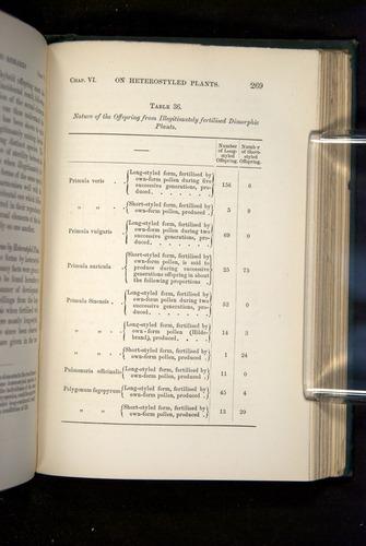 Image of Darwin-F1277-1877-269