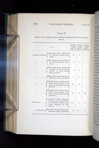 Image of Darwin-F1277-1877-270