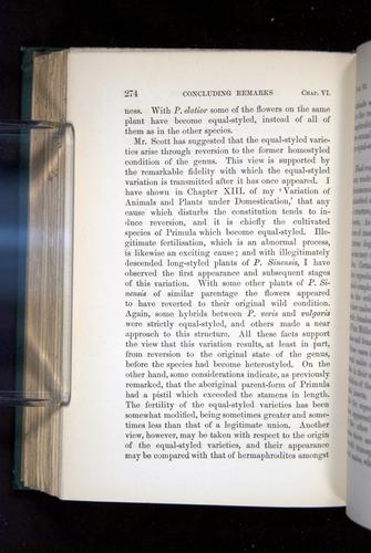 Image of Darwin-F1277-1877-274