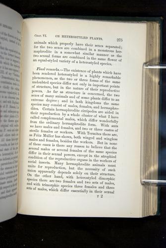 Image of Darwin-F1277-1877-275