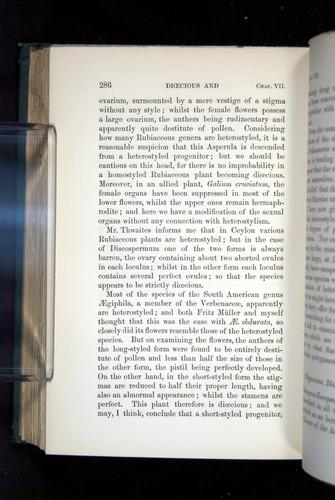 Image of Darwin-F1277-1877-286
