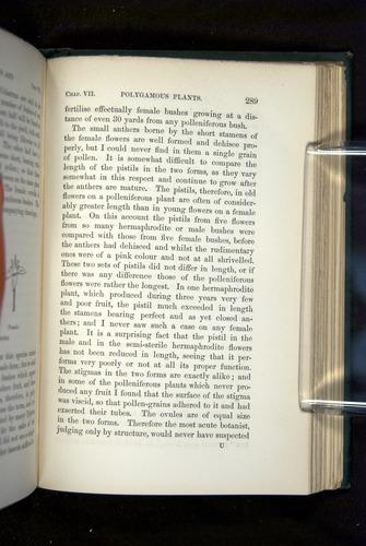 Image of Darwin-F1277-1877-289