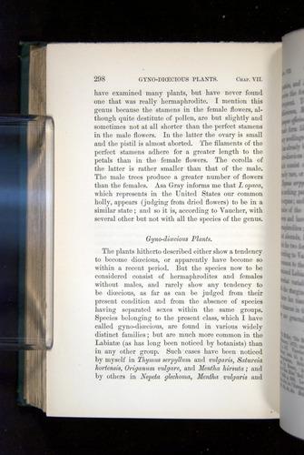 Image of Darwin-F1277-1877-298