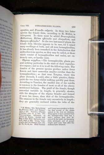 Image of Darwin-F1277-1877-299