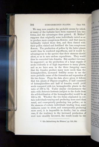 Image of Darwin-F1277-1877-304