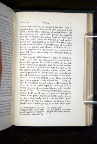 Image of Darwin-F1277-1877-317