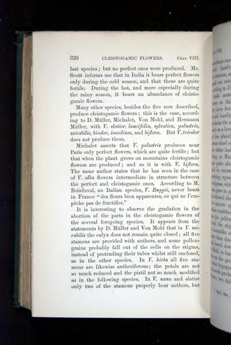 Image of Darwin-F1277-1877-320
