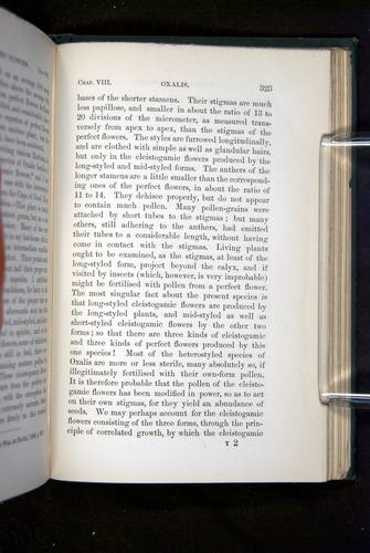 Image of Darwin-F1277-1877-323