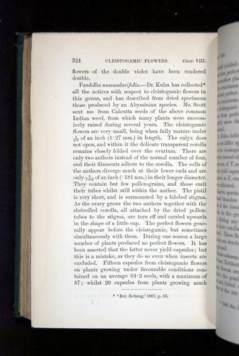 Image of Darwin-F1277-1877-324