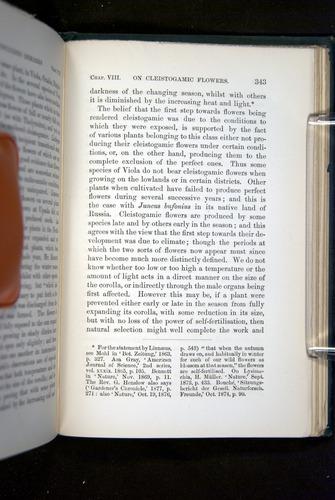 Image of Darwin-F1277-1877-343