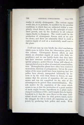 Image of Darwin-F1277-1877-344