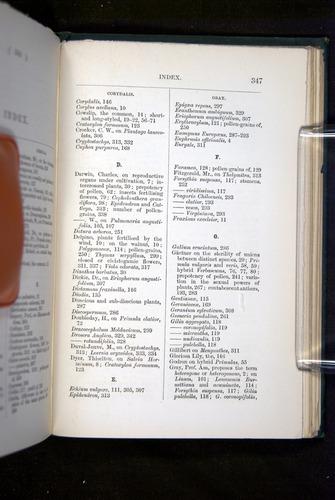 Image of Darwin-F1277-1877-347