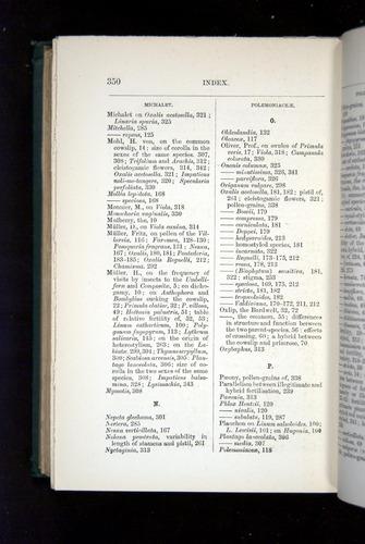 Image of Darwin-F1277-1877-350